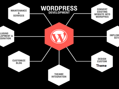 5 Things To Bear In Mind For A Custom WordPress Development Service