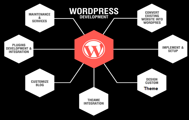 5 Things To Bear In Mind While Selecting A Custom WordPress Development Service