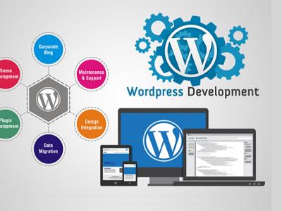 8 Reasons to Choose WordPress Web Development for business websites