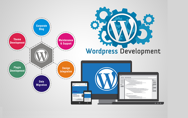 PSD MARKUP Website design and development services